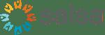 Logo Salsa Labs