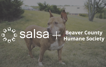 BCHS Uses Salsa Peer to Peer Fundraising Software