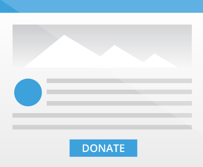 Salsa Online Fundraising Software