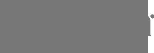 Salsa-Logo-Gray