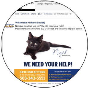 Facebook Mobile Fundraising Advocacy