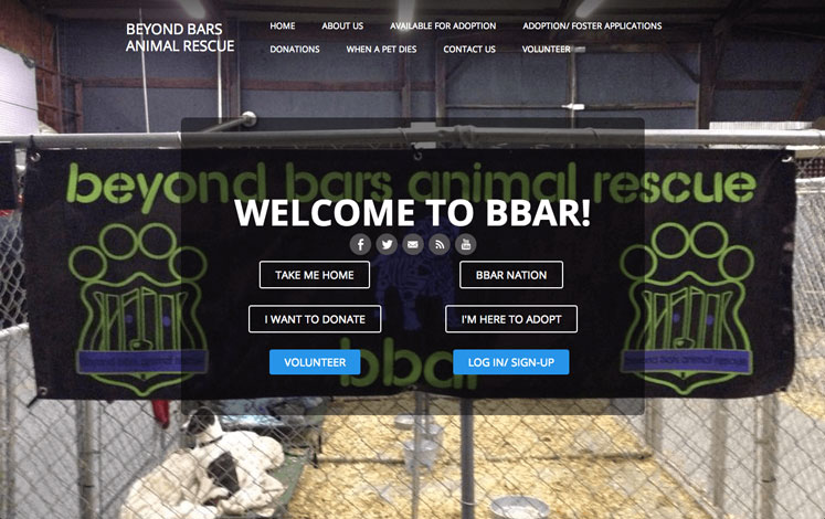 Example Nonprofit Website Beyond Bars