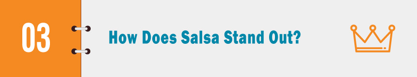 How does Salsa's donor software stand out?