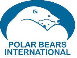 polarbearsinternational