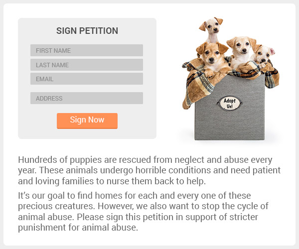 Marketing automation for nonprofits streamlines lead captures from petitions.