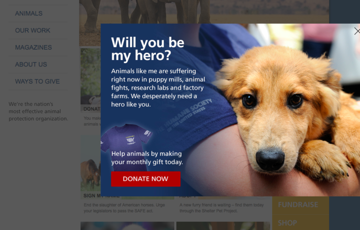 Use pop-ups to convert more online donations for nonprofits.