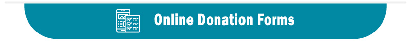 Salesforce fundraising software should offer custom online donation forms.