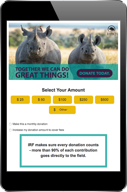 IRF Donation Page
