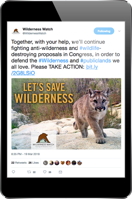 Wilderness Watch Twitter Post