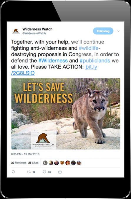 Wilderness Watch Twitter Post